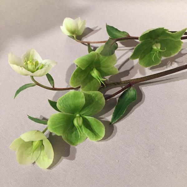 1_floralontable_02-copy